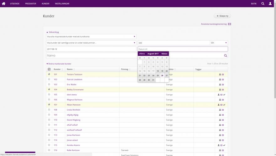 Admin - Kunder, filtrera och sök fram rätt målgrupp (kundsegmentering)